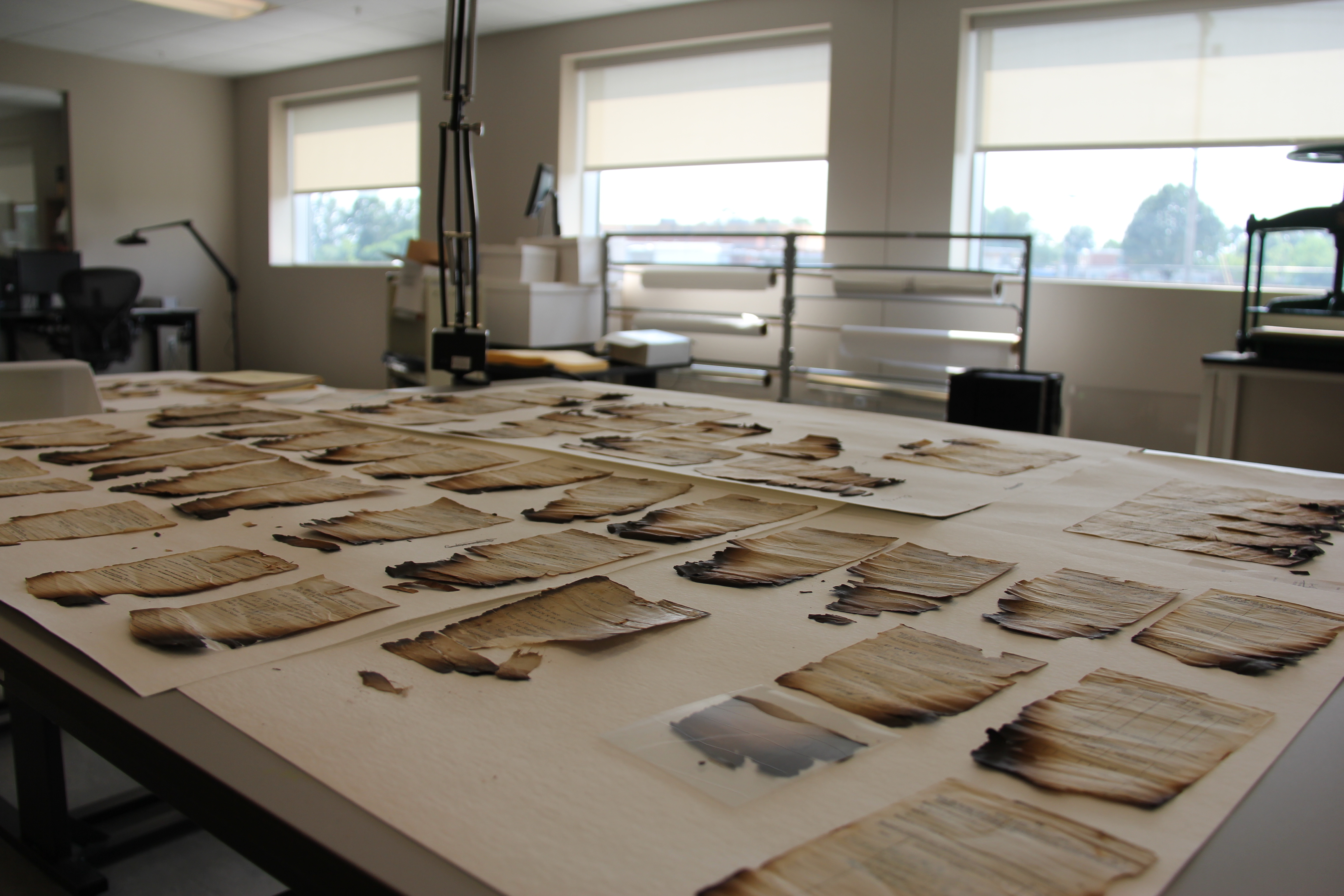 A record in the Paper Lab currently being treated is spread out so fragments can be pieced together and mended.