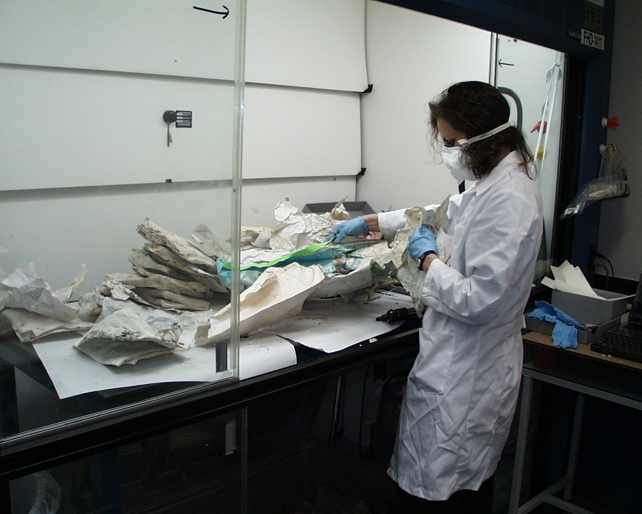 Conservation staff wore gloves and masks, and worked under ventilation hoods.