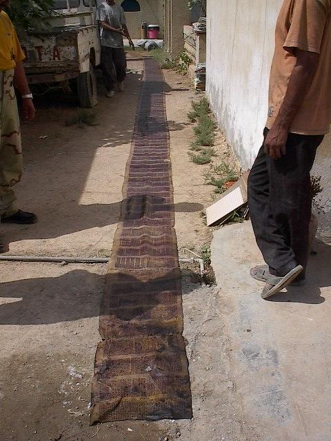 A Torah fragment drying.