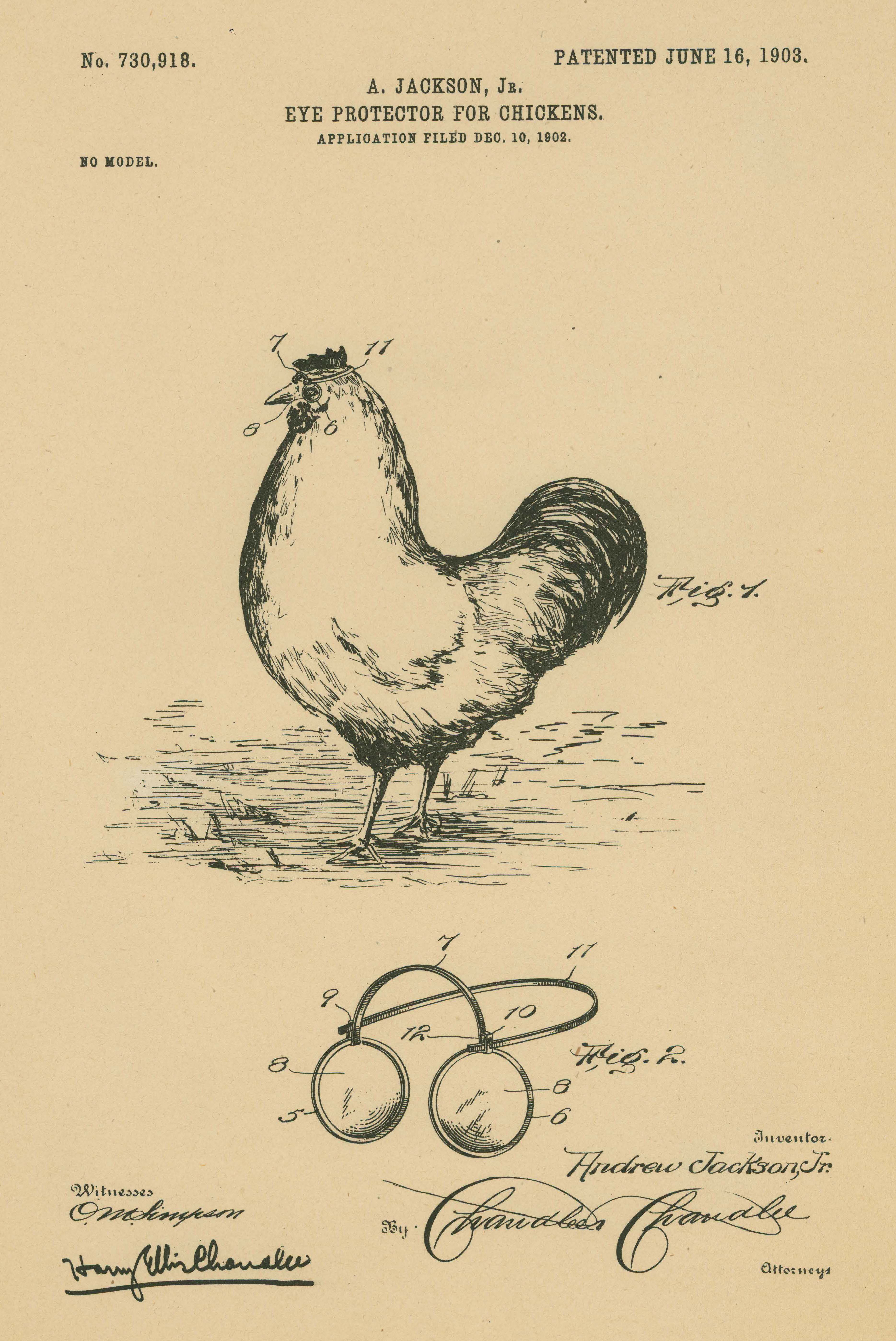 """Why did the chicken need glasses? Find out by tuning into """"Patently Amazing: Finding Your Family in Patent Records"""" at 3:00 PM EDT on Thursday, October 30, 2014.   (National Archives Identifier 7460045)"""
